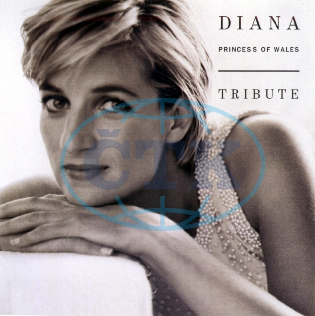 Musicians publish tribute to Princess Diana