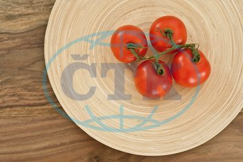 Food food food food health healthy eating tomato dish tomato bush tomato...