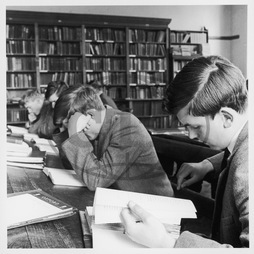 Schoolboys studying in school library