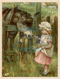 GIRL FEEDS DONKEY C1885