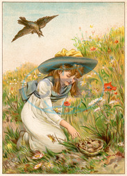 GIRL WITH NESTLINGS 19C