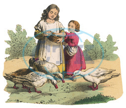 GIRLS FEED DUCKS C1850