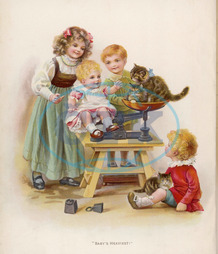 WEIGHING BABY AND CATS