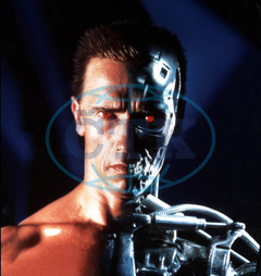TERMINATOR 2 JUDGEMENT DAY ARNOLD SCHWARZENEGGER