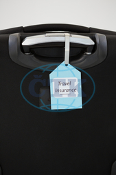 White Background, Blue, Black, Tag, Label, Tied, Handle, Suitcase, Luggage Bag, Luggage, Text, Insured, Business, Vacation, Travel, Tourism, Journey, Trip, Insurance, Security, Safety, Protection, Screen, Touchscreen, Wirele
