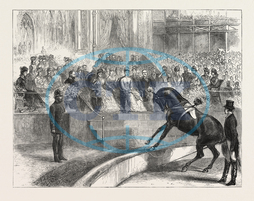 PRINCE OF WALES, PRINCESS OF WALES, CRYSTAL PALACE, ROYAL PARTY, WITNESSING, PERFORMANCE, MYER'S CIRCUS, ENGRAVING, 1876, UK, britain, british, europe, united kingdom, great britain, european, engraved image, history,