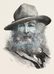 WALT, WHITMAN, 31, 1819, March, 26, 1892, American, poet, essayist, journalist, ENGRAVING, 1876, USA, America, United States, engraved image, history, historic art, illustrative technique, engravement, Arts, Culture, 19th C