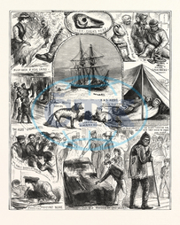 RETURN, ARCTIC, EXPEDITION, SKETCHES, ON BOARD, HER MAJESTY'S SHIPS, ALERT, DISCOVERY, QUEENSTOWN, NEW ZEALAND, OCTOBER, 1876, engraved image, history, historic art, illustrative technique, engravement, Arts, Culture, 1