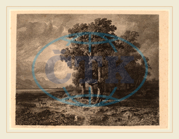 Alexandre Calame, Trees in a Storm, Swiss, 1810-1864, 1840, etching on chine collé, Alexandre, Calame