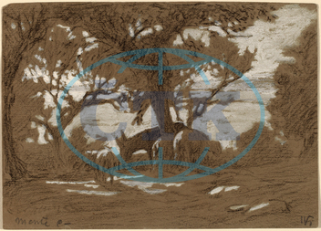Elihu, Vedder, Mt., Colognola, Sheep, Grazing, Lake, Trasimeno, American, 1836, 1923, 1878, gouache, charcoal, light, brown, paper, Elihu Vedder
