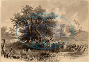 Régis, François, Gignoux, Trees, Bedford, New, York, American, France, 1816, 1882, 1849, brush, gray, black, ink, wove, paper, Régis François Gignoux