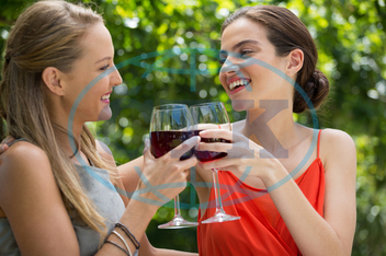 Woman, Female, Caucasian, Young Adult, Happy, Smiling, Cheerful, Togetherness, Leisure, Lifestyle, Together, Spare Time, Free Time, Time Off, Enjoying, Happiness, Summer, Summertime, Holding, Wine, Red Wine, Wineglass, Alc