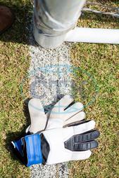 Soccer, Sport, Activity, Competitive Sport, Professional Sport, Team Sport, Soccer Field, Playing Field, Field, Sunny, Sunlight, White, Blue, Grass, Green, Nature, Plant, Growth, Soccer Glove, Black, Goal Post, Yard Line,