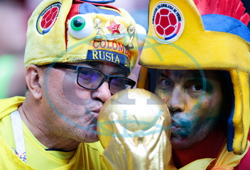 2018 FIFA World Cup: fans