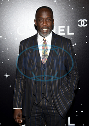 Michael K. Williams,  herec