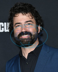 Ron Livingston,  herec,  vousy