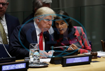 DONALD TRUMP,  NIKKI HALEY