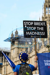 Británie-EU-parlament-demonstrace-brexit