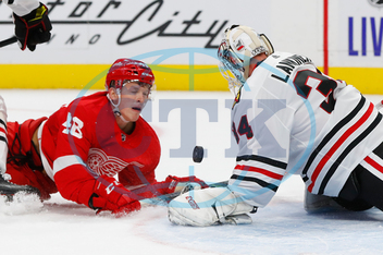 CHASE PEARSON,  KEVIN LANKINEN