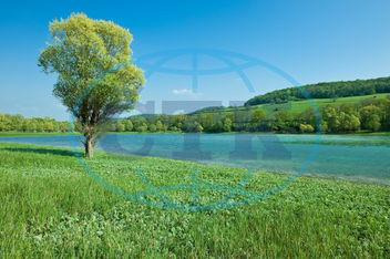 blue, clean, environment, europe, forest, france, grass, green, hills, holiday, idyllic, lake, landscape, mountain, nature, nobody, outdoors, purity, quiet, silence, sky, solitude, spring, summer, sunny, tourism, tranquil, trav