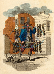RABBITS FOR SALE 1804