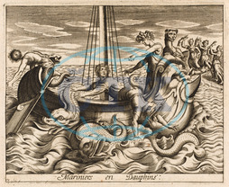 SAILORS INTO DOLPHINS